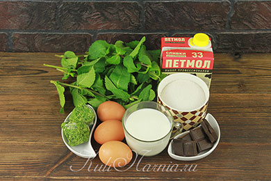 Ингредиенты для мятного мороженого с шоколадом